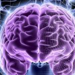 Вебинар Светланы Антоняк «Клинические случаи: токсоплазмоз центральной нервной системы»