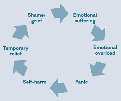 Цикл самоповреждения